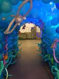 Onderwater Tunnel Diepzee Ballondecoratie_