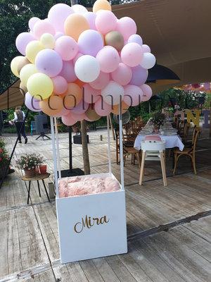 Pastel Organic Luchtballon met Persoonlijke opdruk Fotoscene