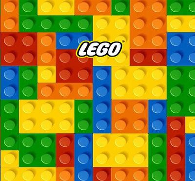 Lego Stenen Backdrop 200x200cm Verhuur