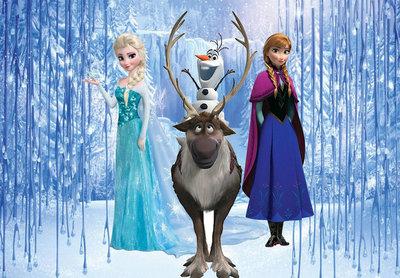 Frozen Backdrop 200x250cm Verhuur