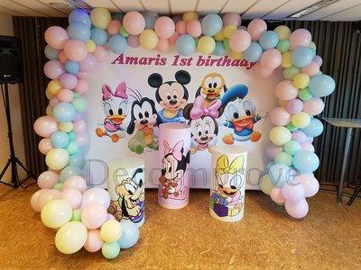 Disney Babies Setting Basic