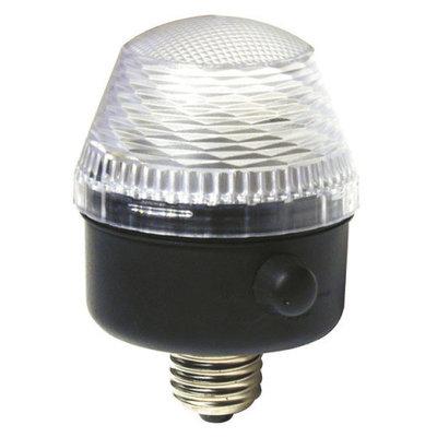 Showtec City Flash IP44 outdoor stroboscoop
