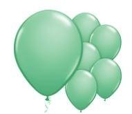 Qualatex Wintergreen Balloons Wintergroen Ballonnen 100st 27cm