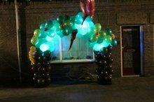 Jungle Boom Ballonnenboog met bewegende LEDverlichting