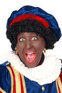 Zwarte Piet Pruik Standaard