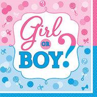 Jongen of Meisje Tafel Servetten 16st