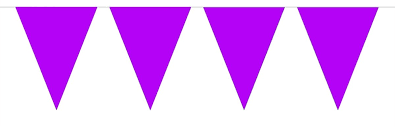Paars XL Vlaggenlijn 10m