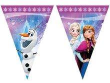 Frozen Noorderlicht Vlaggenlijn 2m