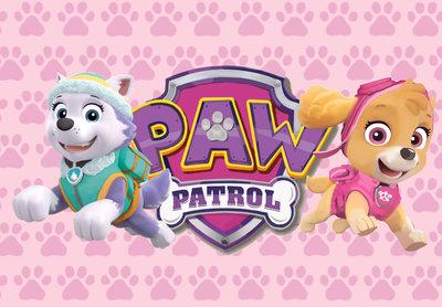 Roze Paw Patrol Backdrop 200x250cm Verhuur